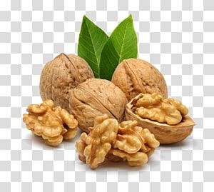 ilustrasi tiga walnut, walnut Inggris Nucule Nutrient Food, Nuts Walnut png