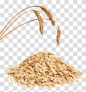 serpihan gandum, sereal Muesli Oat Sarapan, serpihan jagung Telinga, gandum png