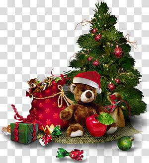 Pohon Natal, Pohon Natal dengan Teddy Bear, ilustrasi pohon Natal hijau PNG clipart