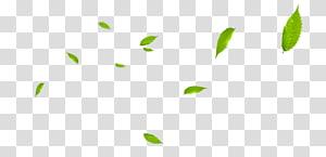 daun hijau, Pola Hijau, Daun terapung png