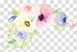 Desain bunga Lukisan cat air Bunga Ilustrasi, bunga cat air, ilustrasi bunga merah muda dan putih png