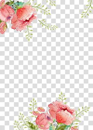 Kertas Bunga Lukisan Cat Air, Bunga latar belakang, lukisan bunga merah muda png