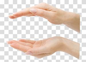 tangan, Digit Jari Tangan, Relatif naik dan turun tangan PNG clipart