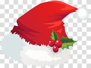 Santa Claus Hat Christmas, Santa Hat with Mistletoe, Santa hat png