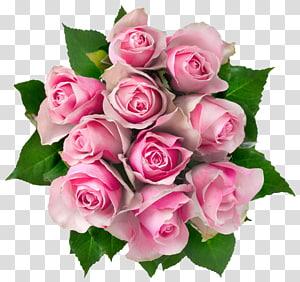Buket bunga Mawar Merah Muda, Buket Mawar Merah Muda, buket mawar merah muda png