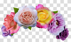berbagai macam warna bunga, Bunga potong Pencarian Mahkota Bunga Emoji, mahkota bunga png