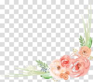 Desain bunga Lukisan Cat Air Bunga, Watercolor Lace angle, ilustrasi bunga pink dan hijau png