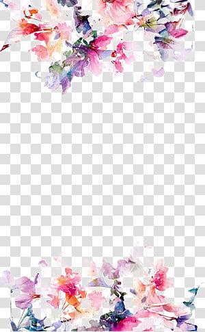 Kertas Bunga iPhone 5s, tepi bunga Cat Air, bunga merah muda dengan latar belakang putih png