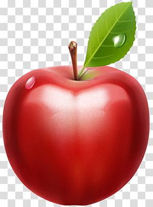 Apple, Apple, ilustrasi buah apel png
