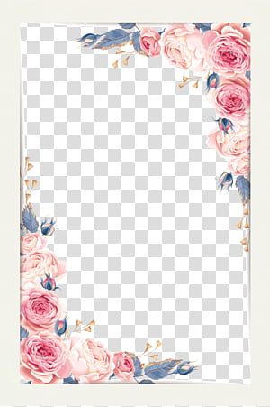 Lukisan cat air, Bahan perbatasan kecil yang indah, ilustrasi mawar merah muda png