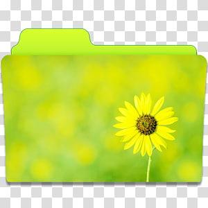 ilustrasi folder yang dicetak bunga matahari, kelopak bunga matahari padang rumput kuning, Folder Sunflower png