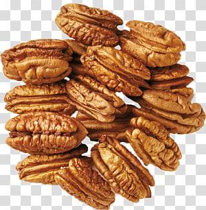 ilustrasi kacang, Buah Kemiri Kacang Kering Almond Pistachio, kacang png