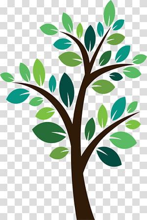 franklin menanam pohon penanaman pohon, naungan png