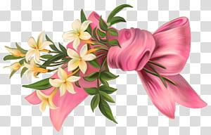Liburan Tahun Baru Pahela Baishakh Bahasa Bengali, Elemen Merah Muda Busur dengan Bunga, pita merah muda dan lukisan bunga putih png
