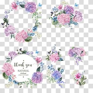 Taman bunga Hydrangea Blossom, karangan bunga buket berwarna, berbagai macam lukisan bunga png