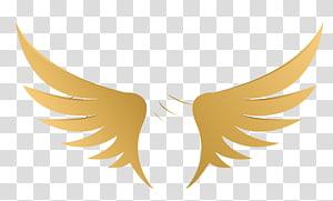 ilustrasi sayap, Ilustrasi Kuning, Sayap png