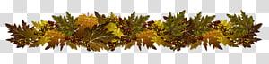 buah holly merah dengan daun hijau dan coklat, Perbatasan Musim Gugur, Perbatasan Dekoratif Musim Gugur PNG clipart