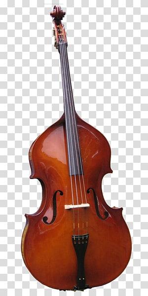Bass ganda gitar Bass Cello Viola String Instruments, bass png