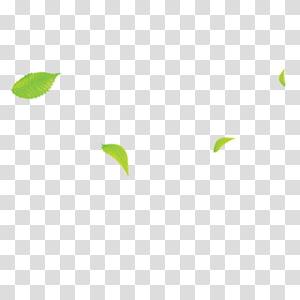 ilustrasi daun hijau, Pola Sudut Area, Daun png