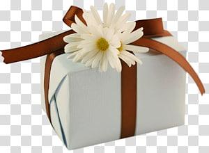 kotak hadiah putih, Kartu Ucapan Selamat Ulang Tahun Persahabatan Kebahagiaan, Hadiah Putih dengan Brown Bow dan Aster png