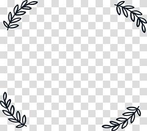 Daun Adobe Illustrator, Batas daun sederhana, bunga putih png