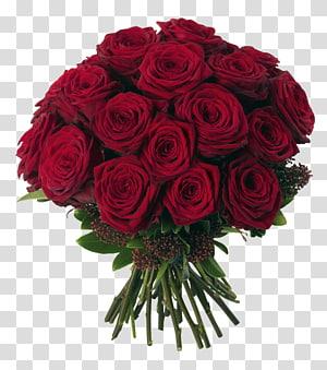 Buket bunga Mawar, Buket Mawar Merah, bunga mawar png