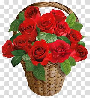 pengaturan mawar merah, Rose Flower Basket Hari Kasih Sayang, Valentine Gift Rose Basket png
