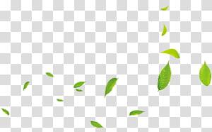 daun hijau, 0 Kartun, Daun hijau kecil png