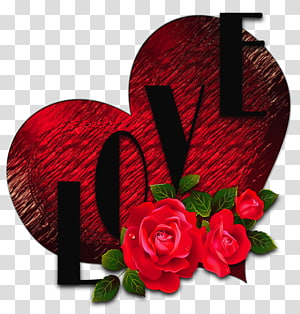 Rose Heart, Heart with Roses and Love, mawar merah dan overlay teks cinta png