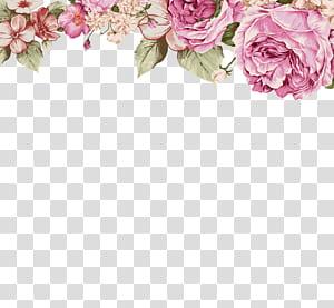 Kertas Bunga Lukisan Ilustrasi, Bunga yang dilukis dengan tangan, bunga merah muda PNG clipart