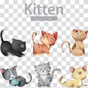 Ilustrasi Kucing Anjing Kucing, Kartun kucing lucu, ilustrasi koleksi kucing PNG clipart