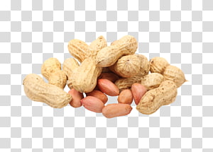 Makanan Kacang Almond Legume, almond png