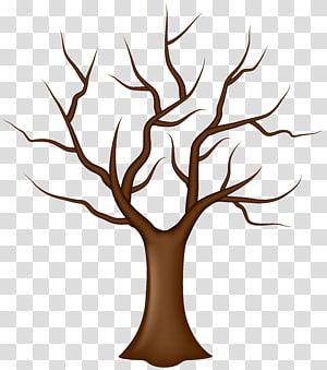 pohon telanjang, Daun Pohon, Pohon tanpa Daun png