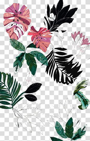 daun, Menggambar Bunga, menanam png