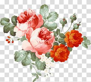 ilustrasi bunga merah dan oranye, lukisan Cat Air Bunga, peony png