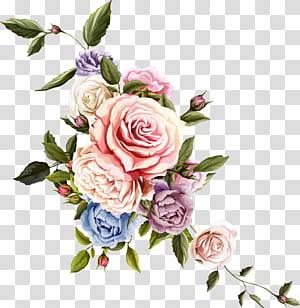 Bunga Desain bunga Mawar Menggambar, bunga yang indah, seni bunga merah muda dan hijau png