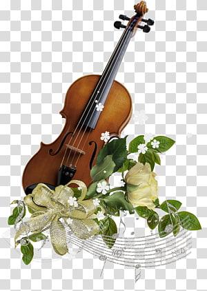 Keluarga biola Alat musik String Cello, dekorasi png