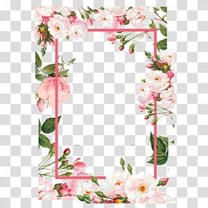 Bunga, Perbatasan bunga merah muda, ilustrasi perbatasan merah muda dan hijau png