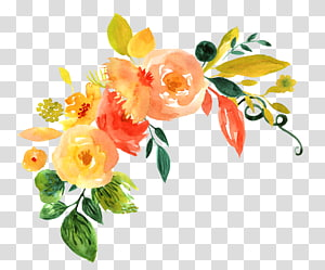 Desain bunga lukisan cat air bunga, Tangan dicat pola dekorasi bunga cat air, ilustrasi bunga oranye dan kuning png