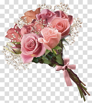 Buket bunga Mawar, Buket Mawar Merah Muda, buket bunga merah muda png