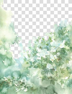 lukisan daun hijau, ilustrasi cat air kuno Cina yang indah png