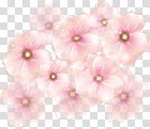 Bunga merah muda, Bunga Merah Muda, bunga sakura merah muda png