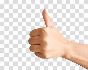 jempol orang, jari jempol tangan jari, jempol ke atas PNG clipart