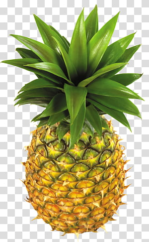 Nanas Kue terbalik Buah, Nanas, buah nanas png