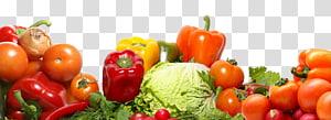 ilustrasi berbagai macam sayuran, Cuci Jus Buah dan Sayur Cuci buah dan sayur, sayuran png