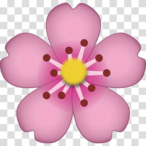 ilustrasi bunga petaled merah muda, iPhone Emoji Sticker Pixel Dungeon, cherry blossom png