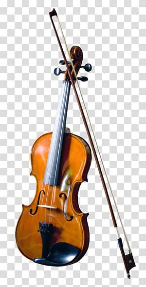 Coklat dan hitam biola dengan busur, Bass biola, Double bass alat musik, Biola png