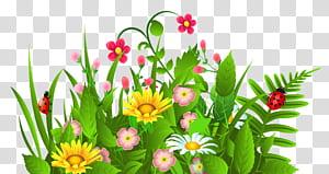 Flower, Cute Grass and Flowers, ilustrasi bunga petaled berwarna kuning, pink, dan putih png