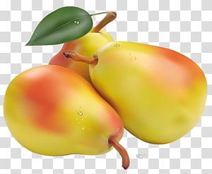 tiga buah pir kuning-dan-merah muda, Pir Fruit Vegetable, Pir png