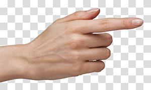 Jari telunjuk tangan, Tuching Hand with Finger, seseorang menunjukkan jari telunjuk PNG clipart